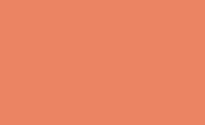 Laranja Citrico